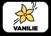 Vanilie